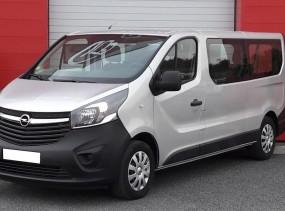 Opel Vivaro occasion - Maine-et-Loire ( 49 )